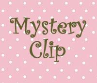 Mystery Hair Clip