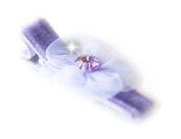 Posh Flower - Lavender